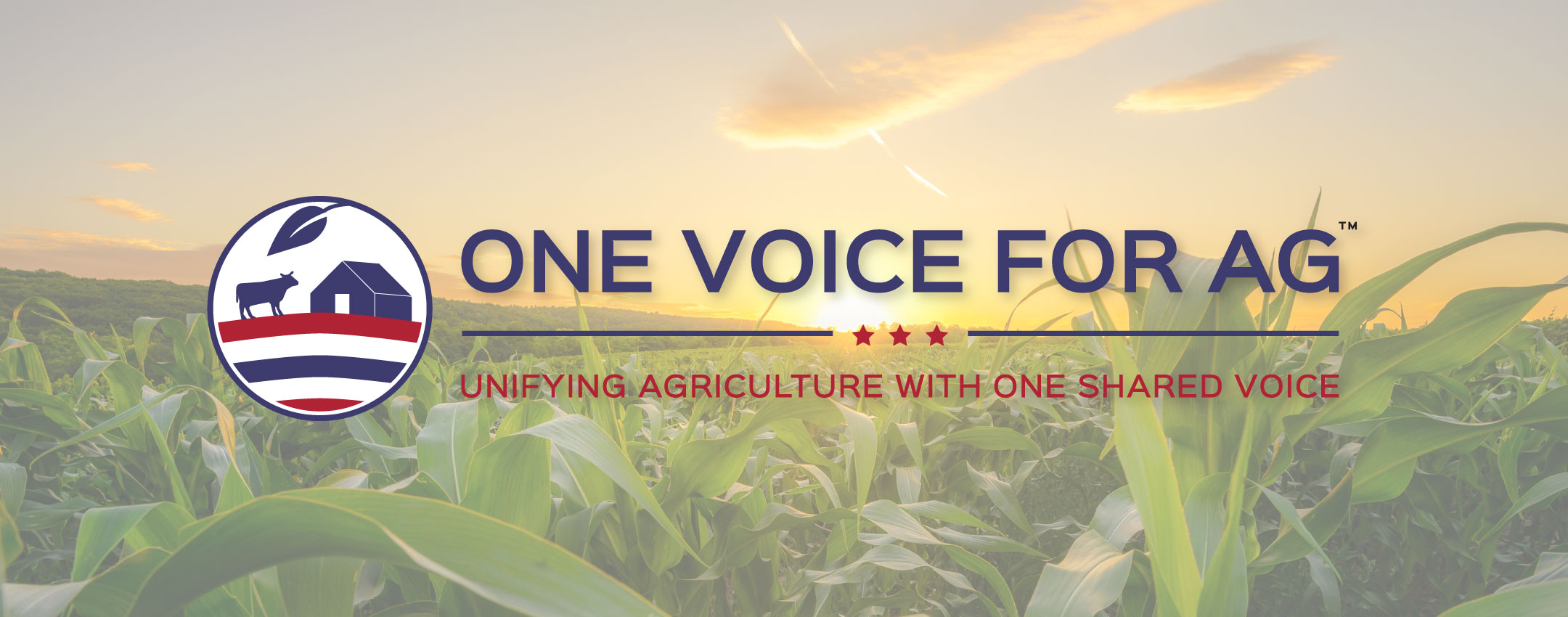 OVFA Banner Image